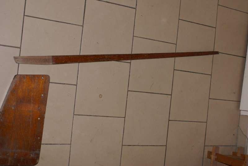 safranVaurien001b.jpg